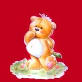 Medvedek na travi  (  10,5 x 12 ) cm )