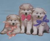 Trije kužki  ( 17 x 20 cm.)