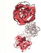 Vrtnice male ( 12 x 7 cm )