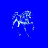 Konj ( 18 x 22 cm.)